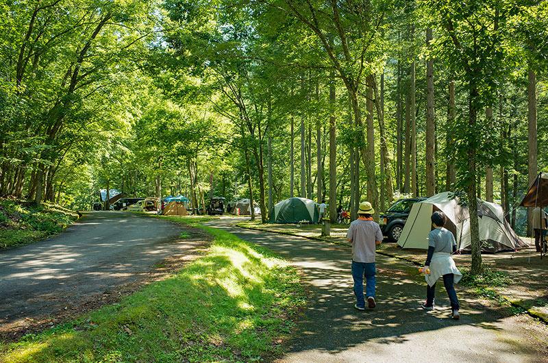 木漏れ日のキャンプ場