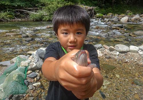 魚つかみの写真