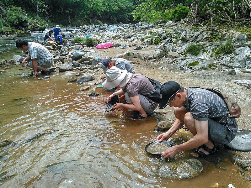 川で砂金を探す